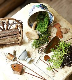 The beginnings of a fairy garden.  Uses herbs and other common plants.http://www.midwestliving.com