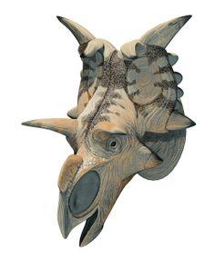 paleoillustration:  Kosmoceratops,Medusaceratops,...
