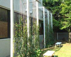壁面緑化ワイヤーブラケットシステムの実績写真一覧 - 浅野金属工業株式会社