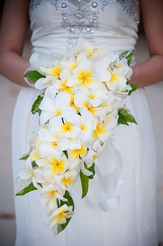 Frangipani Bouquet. Photography by Claire Morgan,