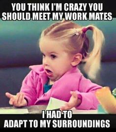 You think I'm crazy you should meet my work mates. I had to adapt to my surroundings | Work Humor