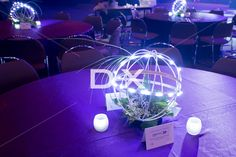 Metal Sphere with LED Lights and Flower Arrangement by DX Design