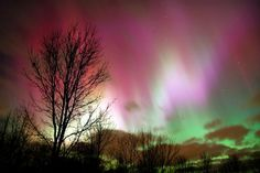 pink and green northern lights, Michigan