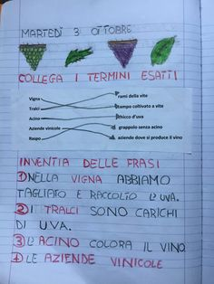 PARTENDO DALLA VENDEMMIA A… Cool Science Experiments, Science Fair Projects, Cooperative Learning, Free Activities, Lesson Plans, Fun Facts, Bullet Journal, How To Plan, Blog