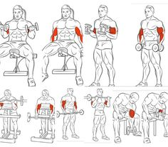 Easy Bodybuilding Training Tips Fitness Workouts, Weight Training Workouts, Body Weight Training, Sport Fitness, Muscle Fitness, Arrow Workout, Jump Workout, Gym Workout Chart, Workout Routine For Men