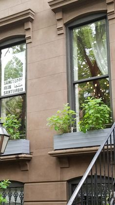 I like the thin lines in the brownstone. However, I don't think I have the wherewithal to maintain flowerboxes.
