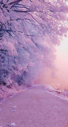 Find images and videos about beautiful, pink and nature on We Heart It - the app to get lost in what you love. Landscape Wallpaper, Scenery Wallpaper, Aesthetic Pastel Wallpaper, Aesthetic Backgrounds, Aesthetic Wallpapers, Beautiful Nature Wallpaper, Beautiful Landscapes, Sky Aesthetic, Purple Aesthetic