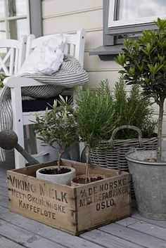 this picture makes me want to wake up in the morning to have my morning coffee out back, while I check on my plants and tend to them. I love that the crate is labeled in Norwegian!