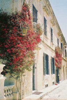 Valletta, Malta. http://www.maltadirect.com/maltacityvalletta