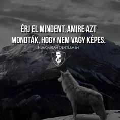 Idézetek Life Learning, Learning Quotes, Wise Quotes, Inspirational Quotes, Gym Quote, Daily Motivation, Good Vibes, Wallpaper Quotes, Love Life