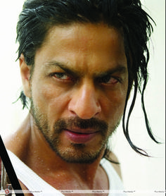 Shahrukh Khan - even his eyebrows are sexy!!!!!!!!! <3