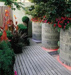 container gardens made of concrete drainage pipes.