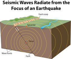 INFO SHEET - Seismic waves - Seismic waves are waves that travel through or over the Earth. They are usually generated by movements of the Earth's tectonic plates (earthquakes) but may also be caused by explosions, volcanoes and landslides. Studies of the different types of seismic waves can tell us much about the nature of the Earth's structure.
