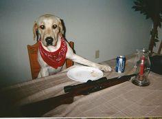Tucker at table
