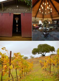BP//Giracci Vineyards & Farms