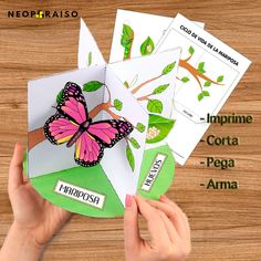 Diy And Crafts, Crafts For Kids, Paper Crafts, Life Cycle Craft, Preschool Classroom Decor, Science Cells, Butterfly Life Cycle, Butterfly Crafts, 3d Cards