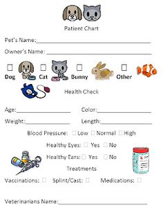 Doc Mcstuffins Hospital Care Chart