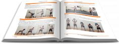 Kayak Strength Training: Get your FREE preview