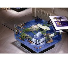 fish tank coffee table!