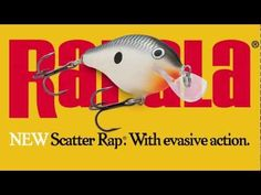 crankin' bait, new from Rapala