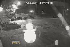 El Grinch. El Gracioso Video De Un Sujeto Que Apuñala A Muñeco De Nieve