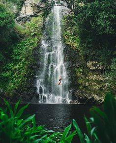 Playing Tarzan with at this tropical waterfall in Hawaii! - Photo: - TAG to Share Your Stories with us! - by adventure_culture Beautiful World, Beautiful Places, Places To Travel, Places To Visit, Big Island Hawaii, Walking In Nature, Adventure Is Out There, Island Life, Hawaii Travel