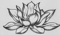 Resultado de imagem para flor de lotos desenho