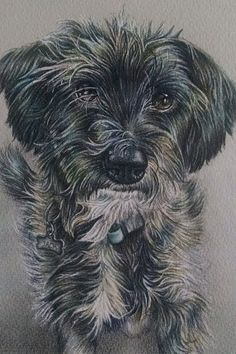 This lovely colored pencil portrait is from the studio of Artistry By Lisa Marie. You send a photo, she does the rest! See portrait size options at ArtistryByLisaMarie.com