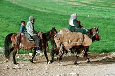 Iran's Nomads