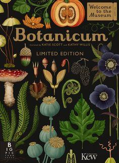 Emily Hughes e Katie Scott: l'illustrazione è botanica : IL Magazine Botanical Drawings, Botanical Illustration, Botanical Prints, Illustration Art, Katie Scott, Old Illustrations, Illustrator, Impressions Botaniques, Illustration Botanique
