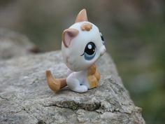 littlest pet shop kitten