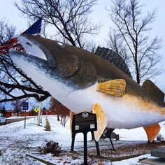 Willie the Walleye and the town of Baudette are gearing up for ice fishing season! Do you like to go #icefishing? #OnlyinMN
