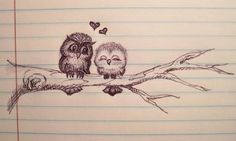 I'm obsessed with owls!!!