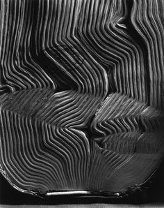 Abelardo Morell(Cuban/American, Book with Wavy Pages 2001 gelatin silver print Still Life Photography, Art Photography, Contemporary Artists, Modern Art, Museum Art Gallery, Getty Museum, Expositions, Paris Photos, Textures Patterns