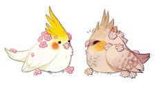Sorry this isn't Art  but i probably am going to draw today but rn I too lazy to draw an Easter thing  I had the motivation to draw West hatching from an egg (cuz she's half birb ) so I lost that motivation so here's some cute lil birbs!