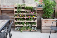 Are you a gardener who is short on space or time? Take your plants vertical. Ben Friton founded Can YA Love, a Washington, D.C.-based company that gives vertical-gardening classes around the world.