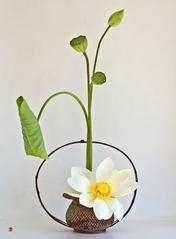 ikebana2.jpg