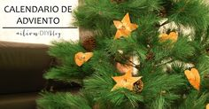 calendario de adviento para el arbol  Advent calendar for the three