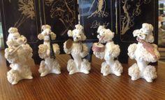 Vtg Spaghetti White Poodles Set of Five Musical Band | eBay