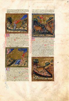 Ovids Metamorphosen | Schätze der Forschungsbibliothek Gotha