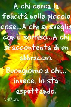 Buongiorno: Don't know what it says but I love the colours