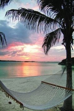 summer #vacation #beach hammock