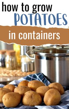 Growing potatoes in containers is the easiest way to get a huge harvest. Learn potato planting tips and what size container you need for growing potatoes. #gardening #containergardening #growyourownfood #organicgardening