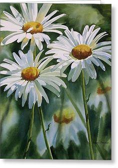 Daisy Trio Greeting Card by Sharon Freeman