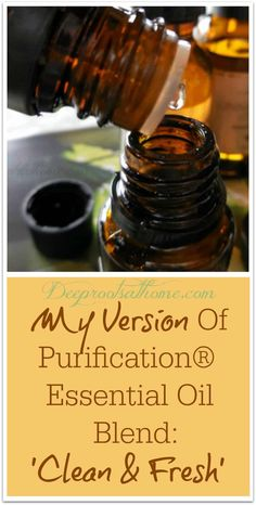 My Version Of The Well-Known Purification® Essential Oil Blend - Blue Violet Boutique - Stephanie Murphy - Limpieza Purification Essential Oil, Essential Oils For Colds, Citrus Essential Oil, Essential Oil Uses, Essential Oil Diffuser, Cedarwood Oil, Cedarwood Essential Oil, Healing Oils, Fresh And Clean