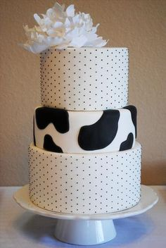A #cow cake