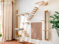 Cat Climbing Shelves, Cat Climbing Wall, Cat Jungle Gym, Cat Gym, Diy Cat Shelves, Cat Wall Furniture, Modern Cat Furniture, Cat Bedroom, Wood Cat