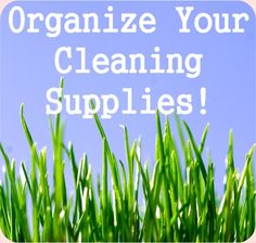 Great ideas on how to organize your cleaning supplies!
