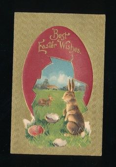 ~Bunny Rabbit in Grassy Field with Red Egg Gold Emb. Easter Postcard-ttt969 #Easter