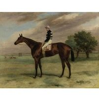 The racehorse Shannon with F Webb up by Harry Hall
